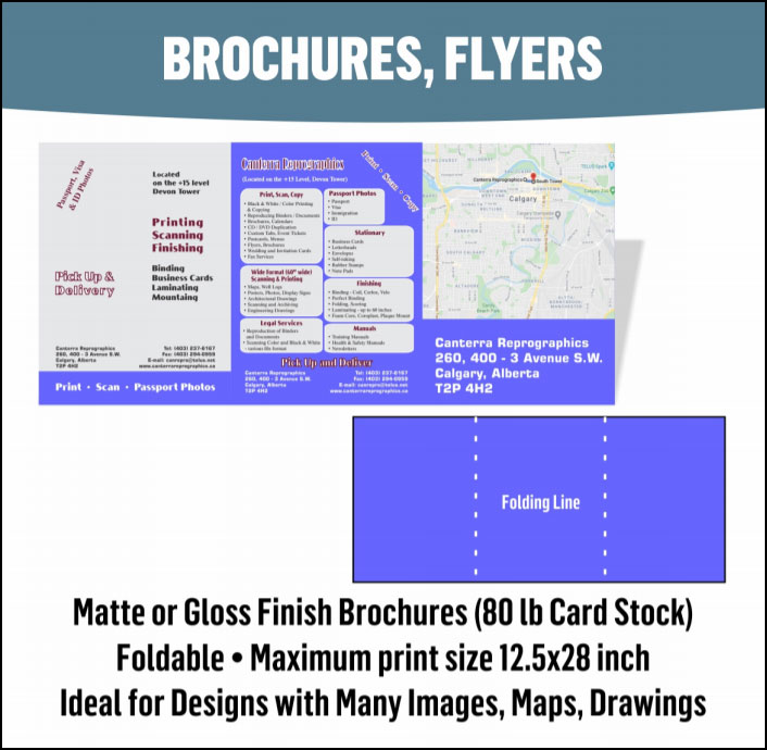 Custom Brochures & Flyers